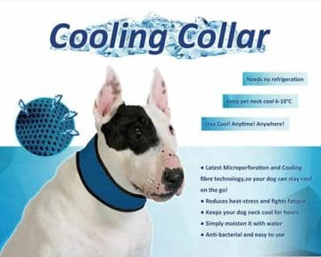 PET COOLING COLLAR - DOG CAT - small - medium or large 'DELUXE' cool collar